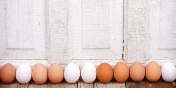 1 brown and white eggs lined up jennifer huls 360x180 - Есть ли разница между белыми и коричневыми яйцами?