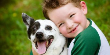 38917 360x180 - Собаки уменьшают риск заболевания атопическим дерматитом у детей