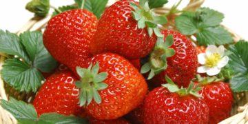 1380310480 klubnika ch1 46 360x180 - Эксперты назвали самые опасные для здоровья фрукты и ягоды