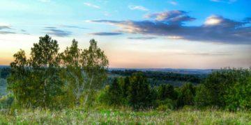 182675 360x180 - 26 интересных фактов о Западной Сибири