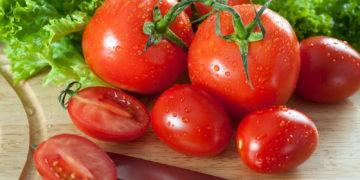 377881 svetik 360x180 - 15 интересных фактов о помидорах