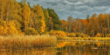 395308 svetik 360x180 - 15 интересных фактов про осень