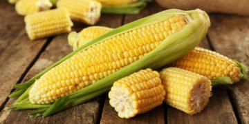 710175 1501061617 360x180 - 25 интересных фактов о кукурузе