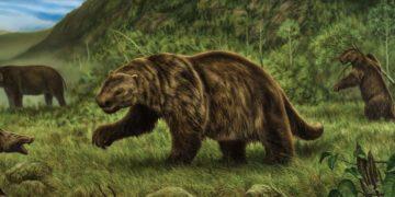 9343d0633a2d3fec98850f3d374642b5 360x180 - 25 фактов о вымерших животных