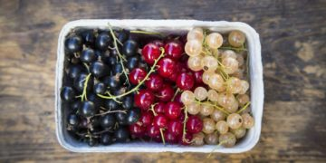 Currants 589963613df78caebc617e28 360x180 - 14 интересных фактов о смородине