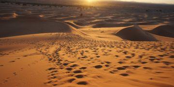 s1200 5 1 360x180 - 15 интересных фактов о пустынях
