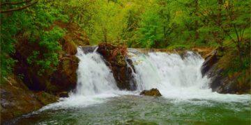 priroda zelen vodopad 360x180 - 12 интересных фактов о водопадах