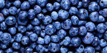 brain foods 5 360x180 - Полезные продукты для мозга