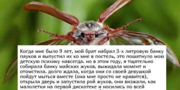 istorii polzovatelejj socialnykh setejj 15 foto 1 360x180 - Истории пользователей социальных сетей (15 фото)