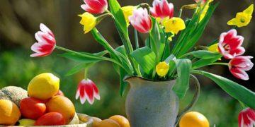 keep flowers fresh 10 360x180 - 10 способов сохранить свежесть цветов