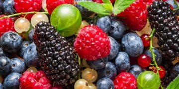 methods freezing vegetables 11 360x180 - 14 способов заморозки фруктов и овощей для максимального сохранения вкуса и вида