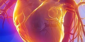 strengthen heart h 7 360x180 - 10 шагов для укрепления сердца