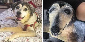 2 28 700x366 360x180 - Мама хотела порадовать дочь, сделав скульптуру в виде её пса, а получилось… то, что получилось