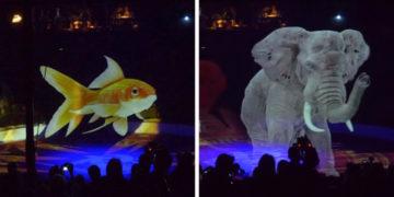 3 1 700x366 360x180 - Немецкий цирк нашёл красивое решение проблемы эксплуатации животных. Вместо них выступали голограммы