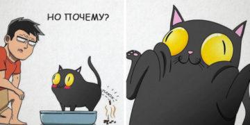 4 6 700x366 360x180 - 19 комиксов, которые демонстрируют, что жизнь с котом — это отдельная профессия