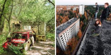 avpvyapvap 700x366 360x180 - 20 фотографий из Чернобыля, которые показывают, как природа восстанавливает заражённую землю