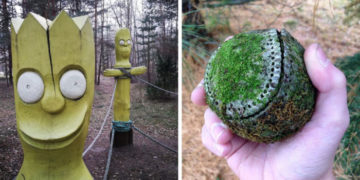 fyayfvay 700x366 360x180 - 20 неожиданных и странных вещей, которые были найдены во время лесных прогулок