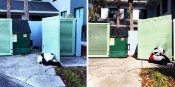 vpavpvapv 700x366 360x180 - Эта панда была выброшена в мусорку, но неравнодушные люди спасли её и даже помогли завести Инстаграм