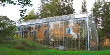 6 700x366 360x180 - Шведская семья превратила свой дом в огромную теплицу, жизни в которой позавидуют не только помидоры