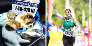 pravrpa 700x366 360x180 - Участница марафона подобрала щенка на обочине и пробежала с ним ещё 30 километров до самого финиша
