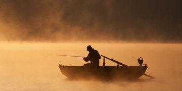 723 800x517 360x180 - Туманная жизнь на озере