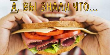 360x180 - 16 интересных фактов о хлебе