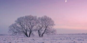 winterbeauty05 360x180 - Фотограф ежедневно встает рано утром, чтобы запечатлеть красоту зимы