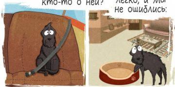 1 187 685x1024 360x180 - Комикс о том, как меняется ваша жизнь, если взять собаку из приюта